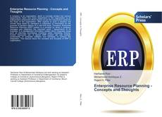 Enterprise Resource Planning - Concepts and Thoughts的封面