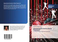 Bookcover of Assessing Excessive Noise Exposure
