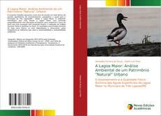 """Copertina di A Lagoa Maior: Análise Ambiental de um Patrimônio """"Natural"""" Urbano"""