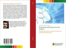 Capa do livro de Produção eletroquímica de ozônio