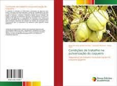 Bookcover of Condições de trabalho na pulverização do coqueiro