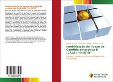"Buchcover von Imobilização de lipase de Candida antarctica B (CALB) ""IN SITU"""
