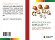 Обложка Efeito da coleta do explante sobre a morfogênese de Garcinia humilis