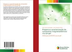 Couverture de Preparo e caracterização de compostos magnetoelétricos via sol-gel