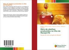 Bookcover of Méis de abelhas produzidos na Ilha de Marajó-PA