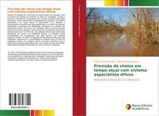 Bookcover of Previsão de cheias em tempo atual com sistema especialista difuso