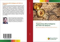 Bookcover of Toponímia Afro-Indígena do Vale do Ipojuca
