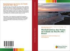 Morfodinâmica das Praias da Cidade do Recife (PE) - Brasil的封面