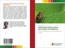Bookcover of Interação trófica entre percevejos predadores