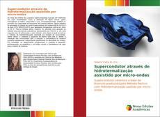 Capa do livro de Supercondutor através de hidrotermalização assistido por micro-ondas
