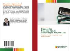 Bookcover of Diagnóstico Organizacional: Vulcanização Tarumã Ltda