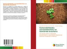 Capa do livro de Vulnerabilidades socioambientais no Semiárido brasileiro