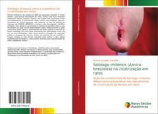 Solidago chilensis (Arnica brasileira) na cicatrização em ratos kitap kapağı
