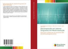 Bookcover of Decomposição em Valores Singulares em Multirresolução