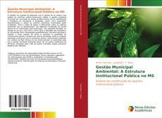 Copertina di Gestão Municipal Ambiental: A Estrutura Institucional Pública no MS