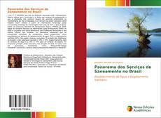 Panorama dos Serviços de Saneamento no Brasil kitap kapağı