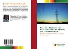 Обложка Benefício Econômico do Bagaço da Cana-de-açúcar: Um Estudo no Setor