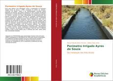 Buchcover von Perímetro Irrigado Ayres de Souza