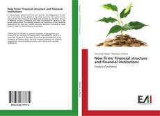 Bookcover of New firms' financial structure and financial institutions