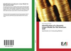 Copertina di Identification of a Dynamic Linear Model for the American GDP