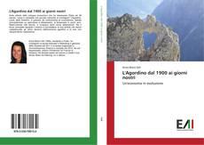 Bookcover of L'Agordino dal 1900 ai giorni nostri