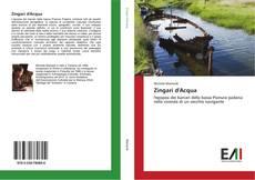Copertina di Zingari d'Acqua