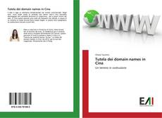 Bookcover of Tutela dei domain names in Cina