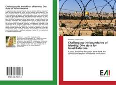 Challenging the boundaries of Identity: One state for Israel/Palestine kitap kapağı