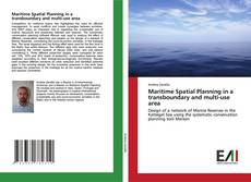 Bookcover of Maritime Spatial Planning in a transboundary and multi-use area