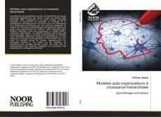 Bookcover of Modèles auto-organisateurs à croissance hiérarchisée
