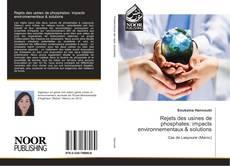 Bookcover of Rejets des usines de phosphates: impacts environnementaux & solutions