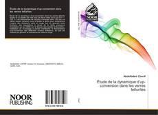Étude de la dynamique d'up-conversion dans les verres tellurites kitap kapağı