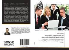Bookcover of Indicateur synthétique de pauvreté et Aide à la décision