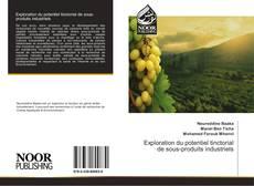 Bookcover of Exploration du potentiel tinctorial de sous-produits industriels