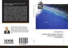 Bookcover of Gestion des risques délais et coûts dans les projets immobiliers