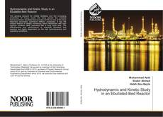 Bookcover of Hydrodynamic and Kinetic Study in an Ebullated-Bed Reactor