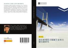 Bookcover of 斜拉桥预应力混凝土索塔关键问题研究