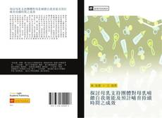 Bookcover of 探討母乳支持團體對母乳哺餵自我效能及預計哺育持續時間之成效