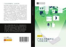 产业技术跨越理论 与民航实践 kitap kapağı