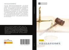 中国司法改革原理研究 kitap kapağı