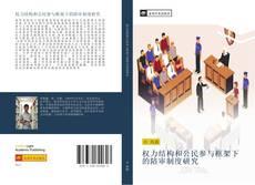 权力结构和公民参与框架下的陪审制度研究的封面