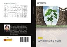 大学科研团队的培育研究的封面