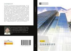 Bookcover of 信用评级经济学