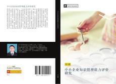 中小企业知识管理能力评价研究 kitap kapağı
