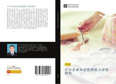 Copertina di 中小企业知识管理能力评价研究