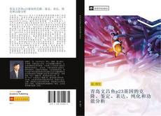 青岛文昌鱼p23基因的克隆、鉴定、表达、纯化和功能分析的封面