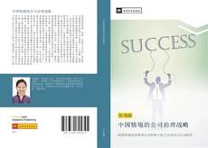 中国情境的公司治理战略 kitap kapağı