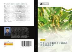 Couverture de 野生大豆和栽培大豆耐盐机理及遗传研究