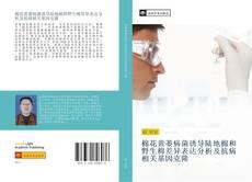 棉花黄萎病菌诱导陆地棉和野生棉差异表达分析及抗病相关基因克隆的封面