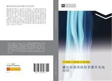 Bookcover of 碳化硅基异质结非紫外光电应用